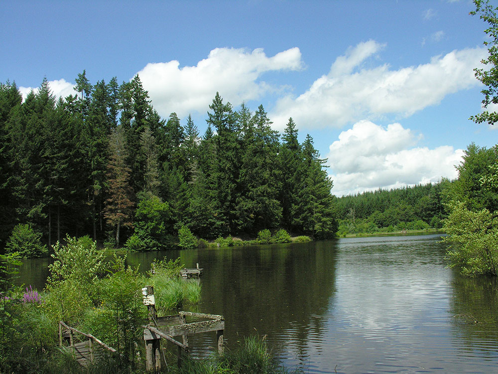 parc-naturel-du-morvan